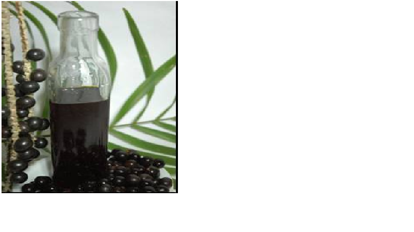 Compro Óleo virgem ou purificado de Açaí (Euterpe oleracea)