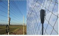 Compro Proteção perimetral