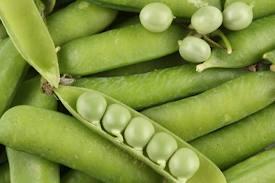 Compro Feijão vegetal
