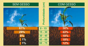 Compro Fertilizante Gesso Agrícola