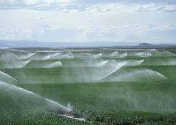 Compro Sistema de Irrigação por Aspersão Convencional