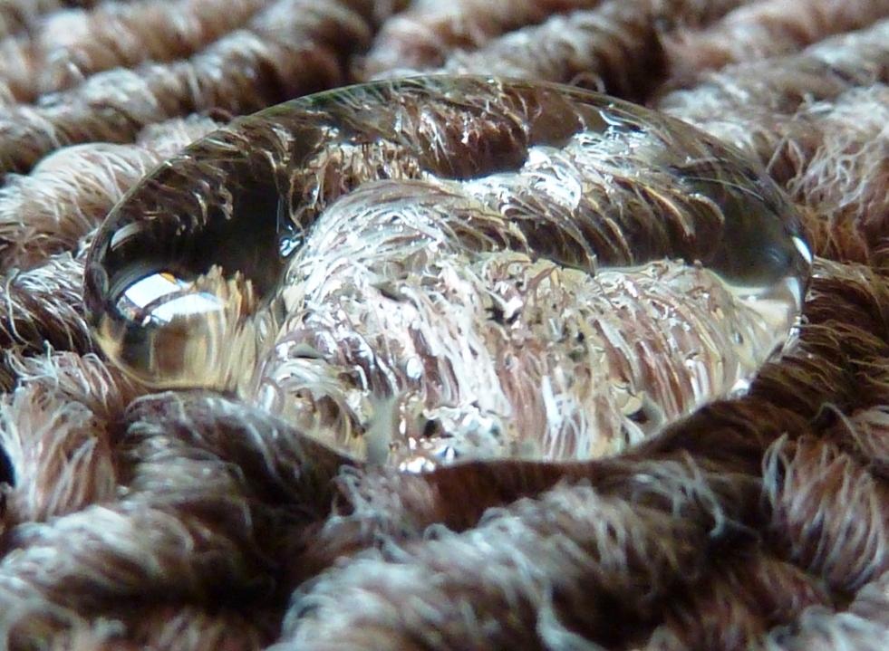 Compro Proteção de carpetes