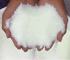 Compro Beet Sugar