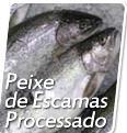 Compro Peixe de Escamas Processado