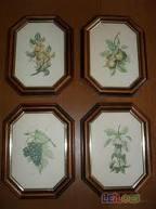 Compro Molduras decorativas