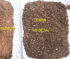 Compro Terra vegetal