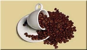 Compro Bebida Quente, Originalizada do cacau, denominada Café