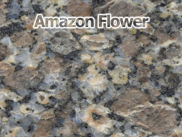 Compro Amazon Flower