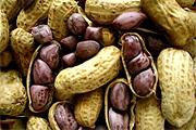 Compro Amendoim