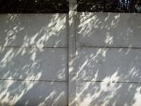 Compro Muros de cimento