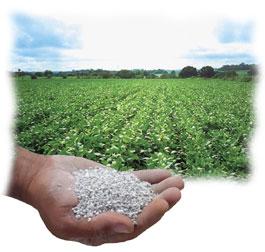 Comprar Gesso Agrícola