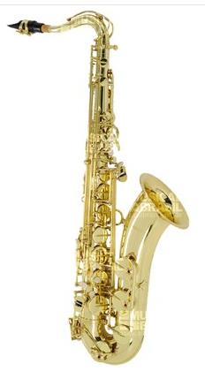 Compro Saxofone Tenor Suzuki JBTS100LQ em Sib (Bb) com Case - Laqueado