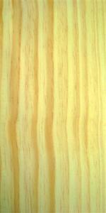 Compro Pinus
