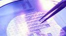 Compro Fabricação de Semicondutores