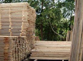 Compro Tabuas de madeira