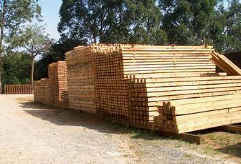 Compro Caibros de madeira