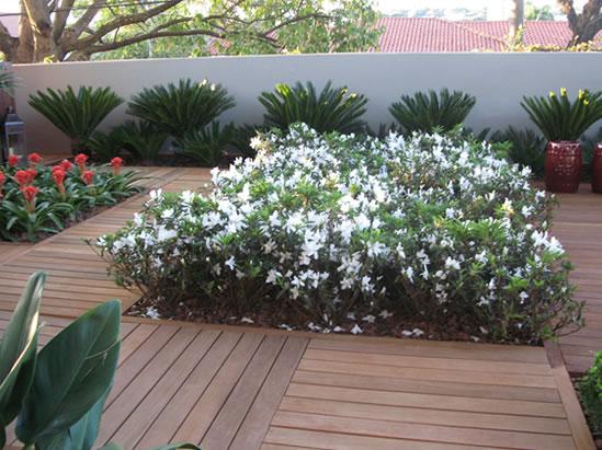 Compro Deck jardim