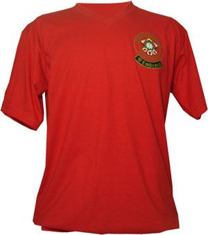 Compro Camiseta Gola V