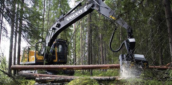 Compro Colhedoras florestais Volvo EC210BF