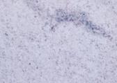 Compro Granito Branco Siena