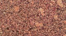 Compro Granito Vermelho Brangança