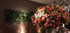 Flores Quadro vivo e Sakura