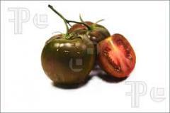 Tomato preto