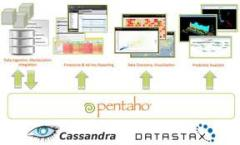 Software Business Analytics Suite