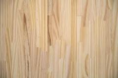 Painéis de Madeira (Pinus)