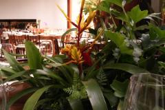 Flores Fasano