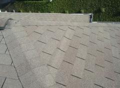 Telhados Shingle