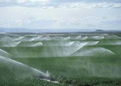 Sistema de Irrigação por Aspersão Convencional