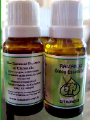 O óleo essencial Raizando de tea tree