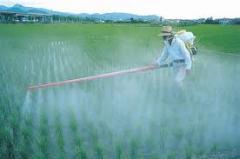 Fertilizantes nitrogenados