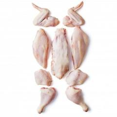 BULK EXPORT HALAL FROZEN WHOLE CHICKEN AND CHICKEN