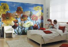 Papeis de parede com foto
