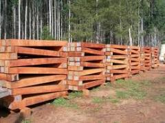Produtos de madeira tratada