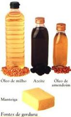 Gordura Vegetal