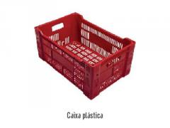 Caixa plástica