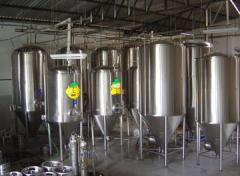 Cerveja viva em tanques