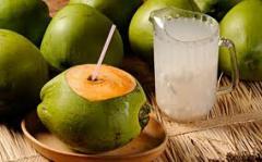 Água de coco – jarra