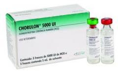 Gonadotrofina Chorulon® 5000 UI