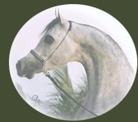 Cavalo Lumiar Balzac