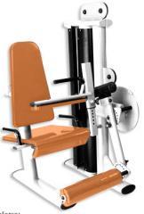 Cadeira femural.