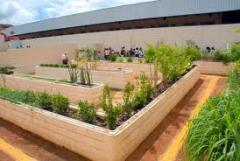 Canteiros complantas e flores para áreas verdes.