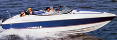 Cobra Cayman 23` Open