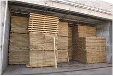 Pallets Pinustan - fabricados totalmente com