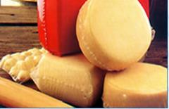 Thermobag Q -  Fabricados a base de copolímeros