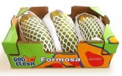 Papaya Formosa.