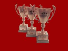 Troféu em forma de taça